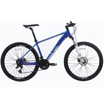 Radial Esker 3.1 Mountain Bike
